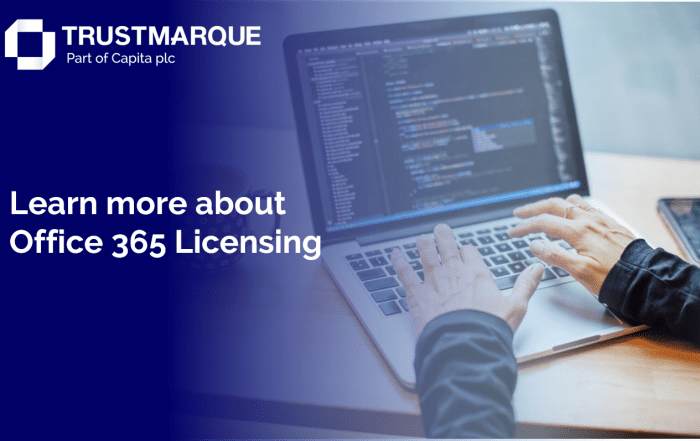 read about Office 365 licensing