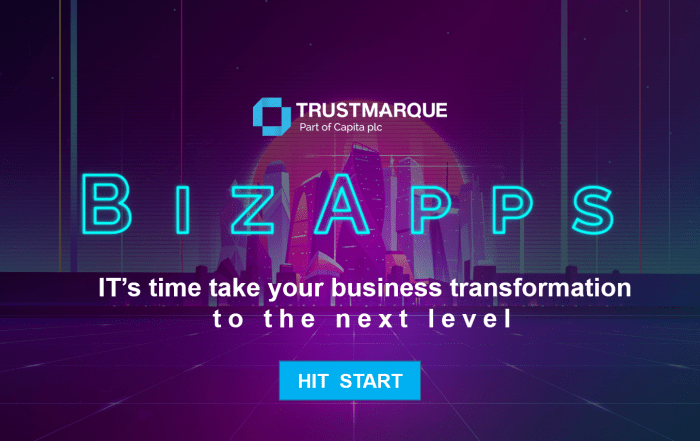 Overview of BizApps Consultancy